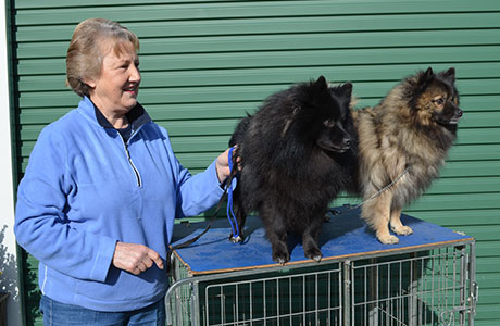 Robyn Ryan with her show dogs